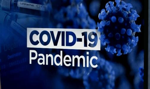 CBD na koronawirusa